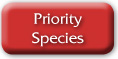 Priority Species